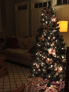 The same tiny tree from my first house, complete with the same ornaments. We just can't break up.