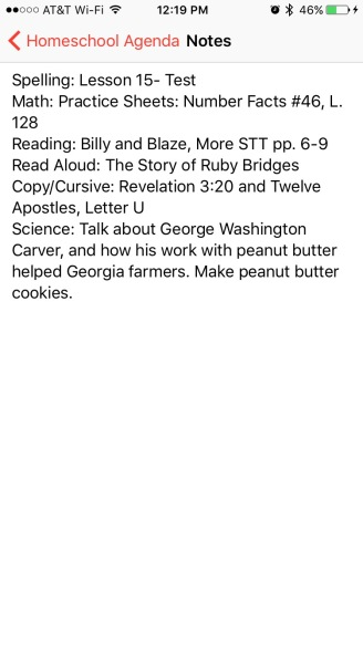 A sample Friday- we didn't read Ruby Bridges, since we've done that already. And the cookies were a no-go, since everyone has the sniffles and ought not to be cooking. Still, and eventful day.